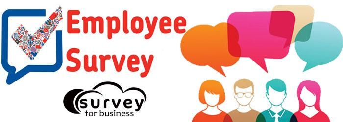Employee Survey. Sample Survey Template To Download Employee Work
